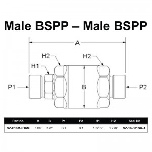 Male BSPP – Male BSPP